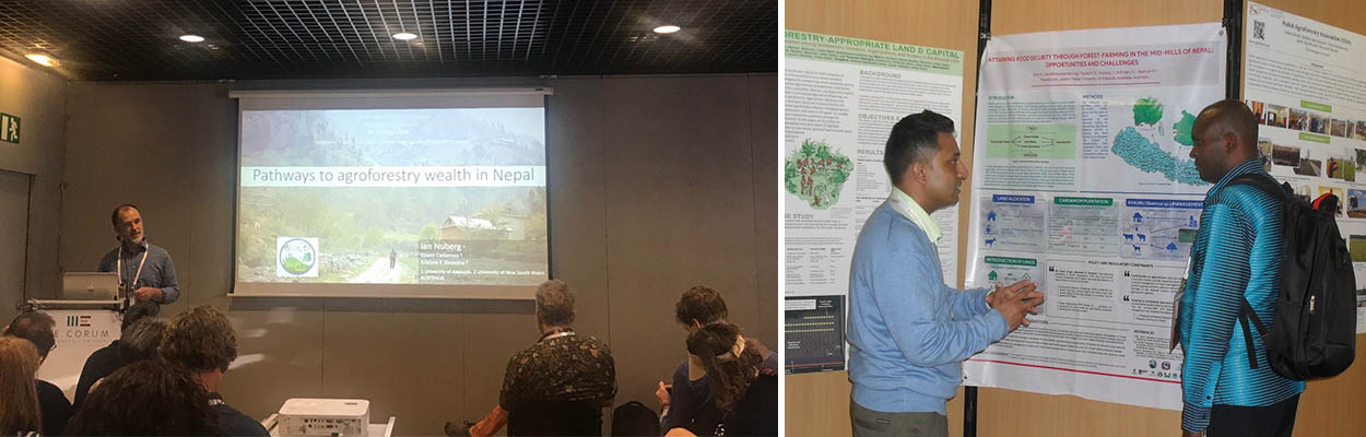 Participation in 4th World Conference on Agroforestry at Montpellier, France